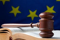 Gjyqësori dhe të drejtat themelore